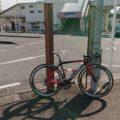 「B.B.BASE」印旛沼ライドコースをロードバイクで走ってみた!!【前編】